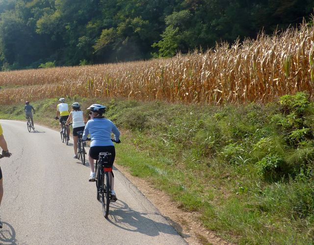 corn-fields-along-bike-route